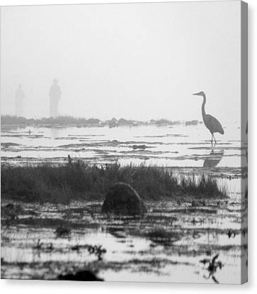 Early Morning Fog Canvas Print by Mike McGlothlen