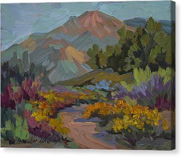 Early Morning Light Santa Barbara Canvas Print by Diane McClary