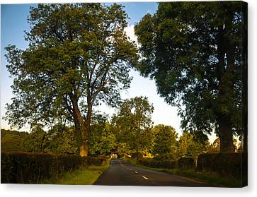 Early Morning On The Way To Trossachs. Scotland Canvas Print by Jenny Rainbow