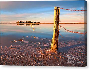 Early Morning Salt Pan Canvas Print by Bill  Robinson