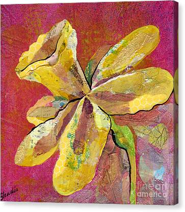 Early Spring II Daffodil Series Canvas Print by Shadia Zayed
