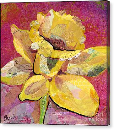 Early Spring IIi  Daffodil Series Canvas Print by Shadia Zayed