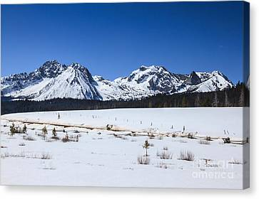 Early Spring In The Sawtooth Range Canvas Print by Robert Bales