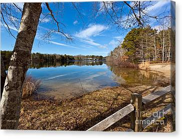 Early Spring On Long Pond Canvas Print by Michelle Wiarda