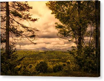 Early Spring Rain Canvas Print by Bob Orsillo