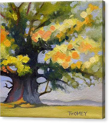 Earlysville Virginia Ancient White Oak Canvas Print by Catherine Twomey