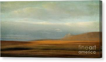 Earthy Tones Canvas Print by Priska Wettstein