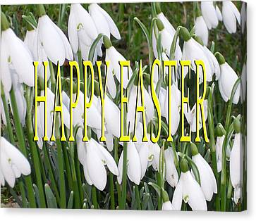 Easter 5 Canvas Print by Patrick J Murphy
