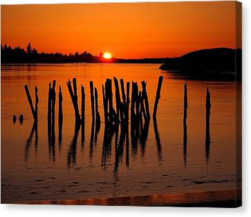 Easter At Popham Canvas Print by Donnie Freeman