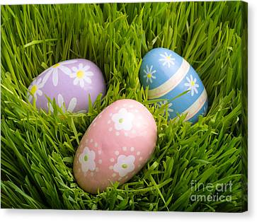 Easter Eggs In The Grass Canvas Print by Edward Fielding