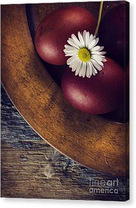 Easter Eggs Canvas Print by Jelena Jovanovic