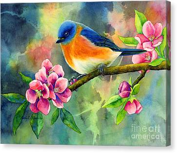 Eastern Bluebird Canvas Print by Hailey E Herrera