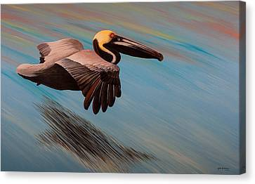 Easy Glider Canvas Print by Matthew Haddaway