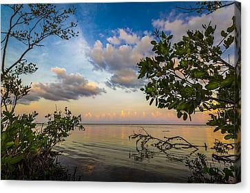 Ebb And Flow Canvas Print by Marvin Spates