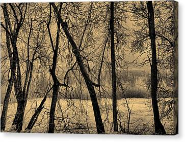 Edge Of Winter Canvas Print by Bob Orsillo