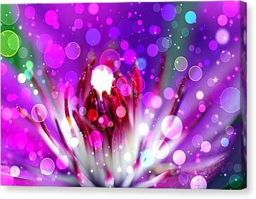 Effervescent Canvas Print by Don Wright