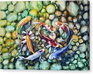 Eight Koi Fish Playing With Bubbles Canvas Print by Zaira Dzhaubaeva