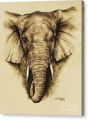 Elephant 2 Canvas Print by Anastasis  Anastasi