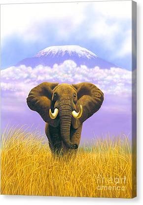 Elephant At Table Mountain Canvas Print by MGL Studio - Chris Hiett