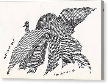 Elephant Bat Canvas Print by Fred Jinkins