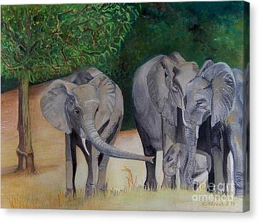 Elephant Family Gathering Canvas Print by Caroline Street