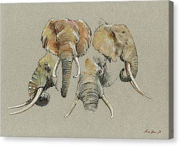 Elephant Heads Canvas Print by Juan  Bosco