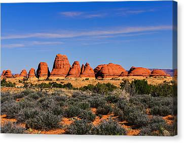 Elephant Hill Canvas Print by Greg Norrell