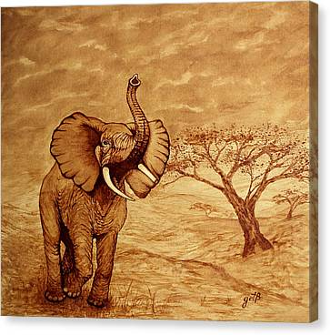 Elephant Majesty Original Coffee Painting Canvas Print by Georgeta  Blanaru