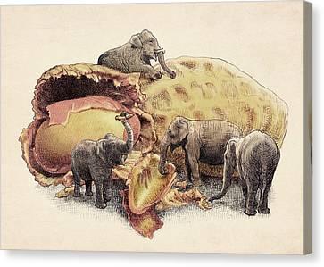 Elephant's Paradise Canvas Print by Eric Fan