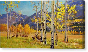 Elk Herd In Aspen Grove Canvas Print by Gary Kim