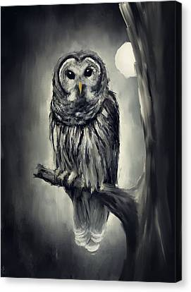 Elusive Owl Canvas Print by Lourry Legarde