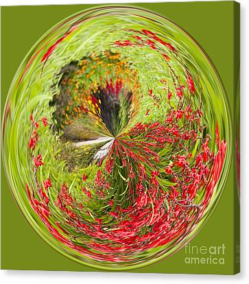 Emberglow Orb Canvas Print by Anne Gilbert