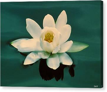 Emerald  Canvas Print by Debra     Vatalaro