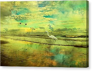 Emerald Evening Canvas Print by Betsy C Knapp