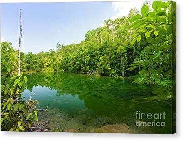 Emerald Pool Canvas Print by Atiketta Sangasaeng