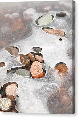 Emerging Spring Canvas Print by James Peterson