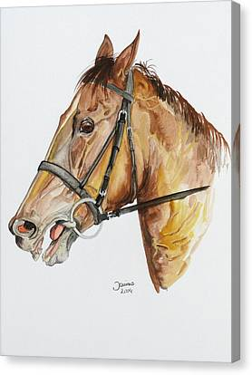 Emir The Horse Canvas Print by Janina  Suuronen