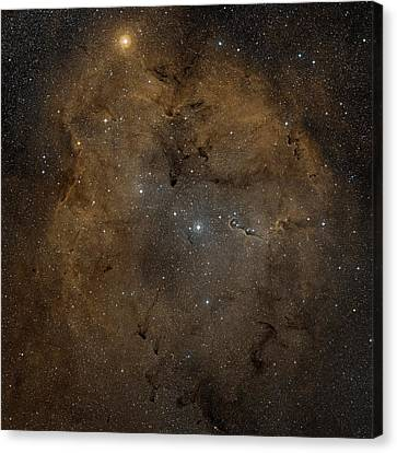 Emission Nebula Ic 1396 Canvas Print by Nasa