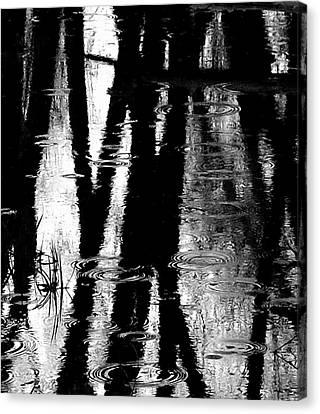 Emotional Crossing - Natures Tear Drops Canvas Print by Steven Milner