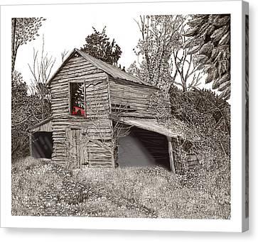 Empty Old Barn Canvas Print by Jack Pumphrey