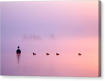 Empty Spaces 2 - Sunrise In The Mist Canvas Print by Roeselien Raimond