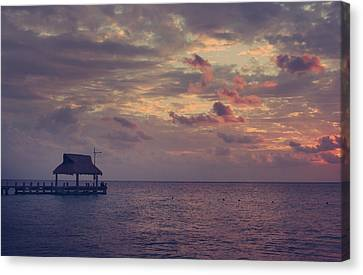 Enchanted Evening Canvas Print by Laurie Search