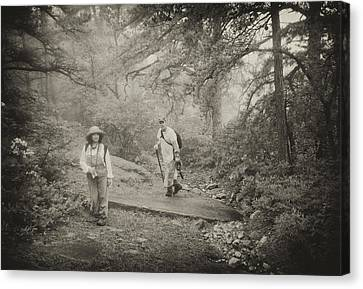 Enchanted Forest Canvas Print by Jim Cook