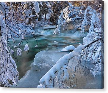 Enchantment Of Winter Canvas Print by Leland D Howard