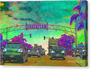 Encinitas California 5d24221p180 Canvas Print by Wingsdomain Art and Photography
