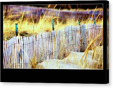 Enclosed Sand Dune Canvas Print by Rosemarie E Seppala