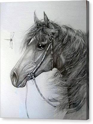 Encounter Canvas Print by Jenny Pride