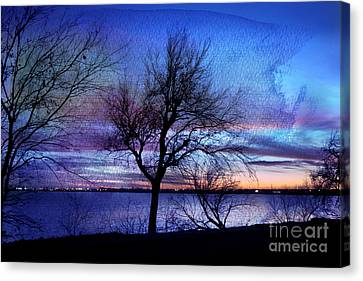 End Of Day Canvas Print by Betty LaRue