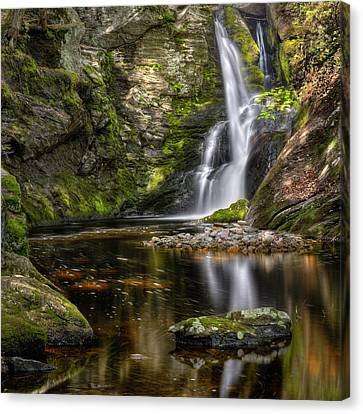 Enders Falls Canvas Print by Bill Wakeley