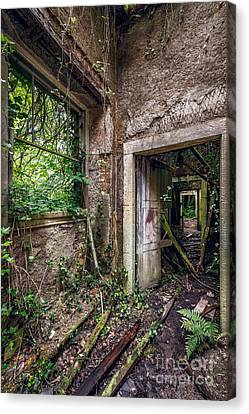 Endless Decay Canvas Print by Adrian Evans